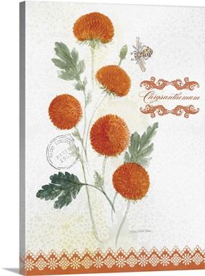 Flower Study on Lace IV
