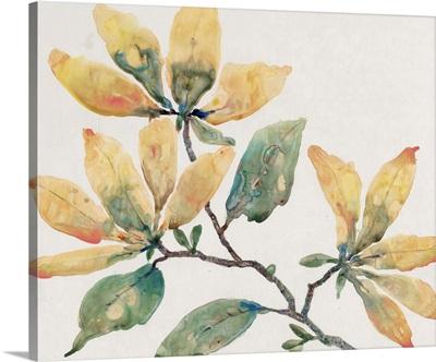 Flowering Branch II