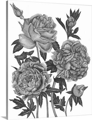Flowers in Grey VI