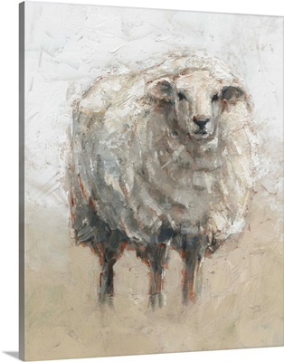 Fluffy Sheep II