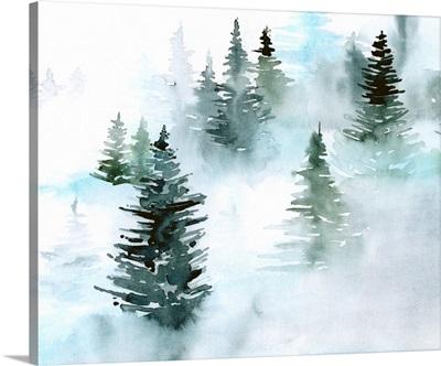 Foggy Evergreens I