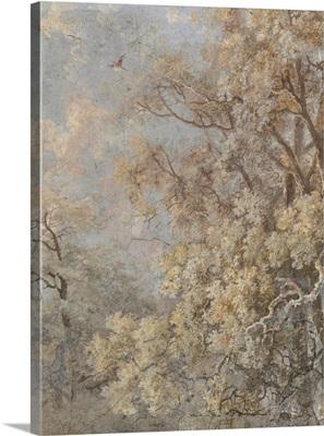 Forest Fresco II
