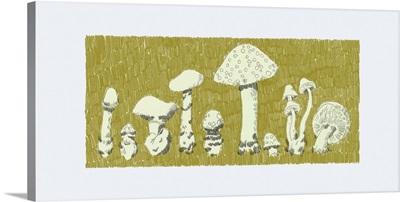 Forest Fungi II