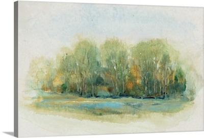 Forest Vignette I