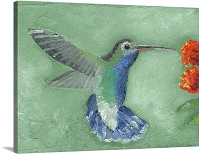 Fresco Hummingbird I