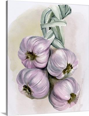 Garlic Braid I