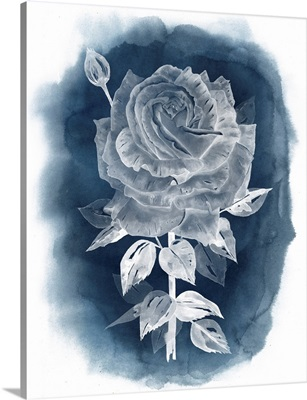 Ghost Rose IV