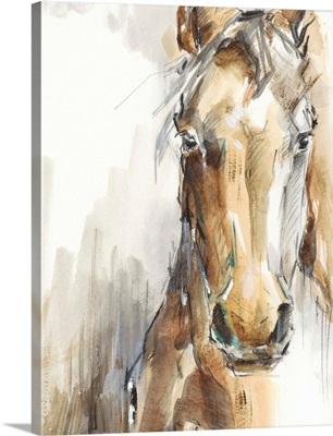Gift Horse I