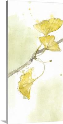 Ginkgo Triptych II