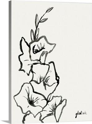 Gladiola Sketch III