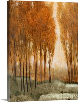 Golden Forest II
