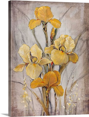 Golden Irises I