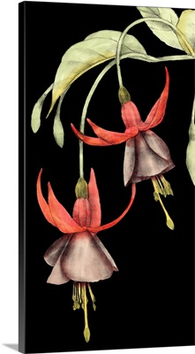 Graphic Fuchsia V