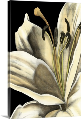 Graphic Lily III