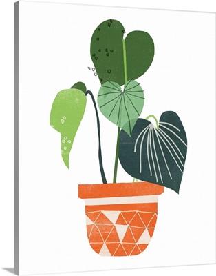 Happy Plants II