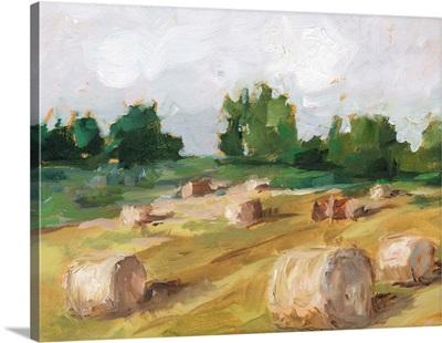 Hay Field I
