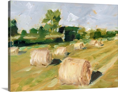 Hay Field II