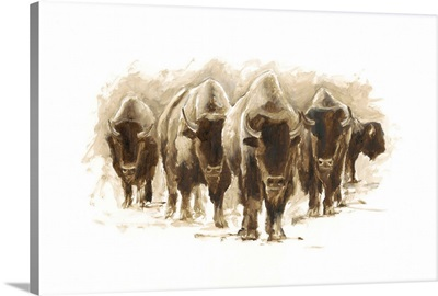 Herd of Bison I