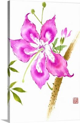Hibiscus Flower II
