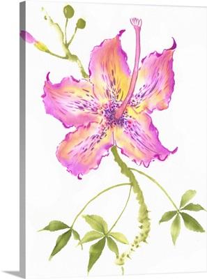 Hibiscus Flower IV