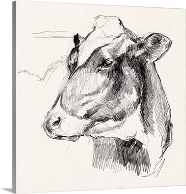 Holstein Portrait Sketch II