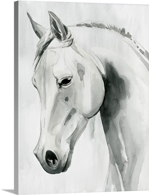 Horse Whisper I