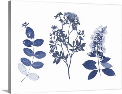 Indigo Pressed Florals I