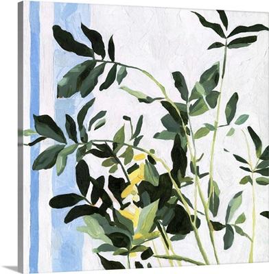 Indoor Plant I