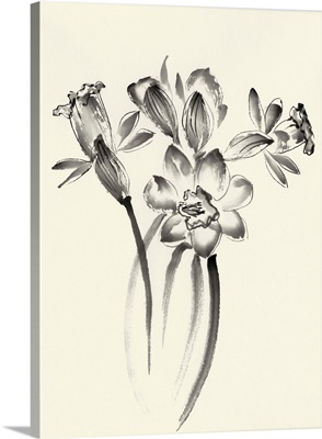 Ink Wash Floral I - Daffodils