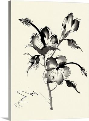 Ink Wash Floral III - Hibiscus