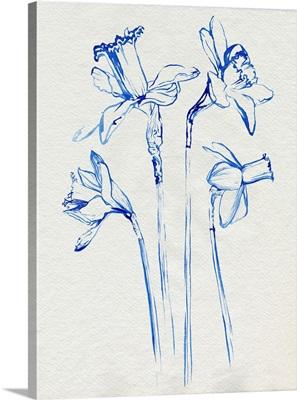 Inky Daffodils II