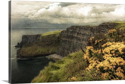 Ireland in Color I