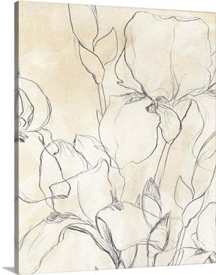 Iris Garden Sketch II