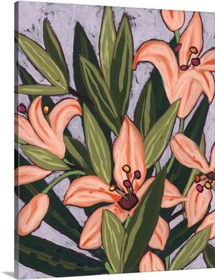 Island Lily I