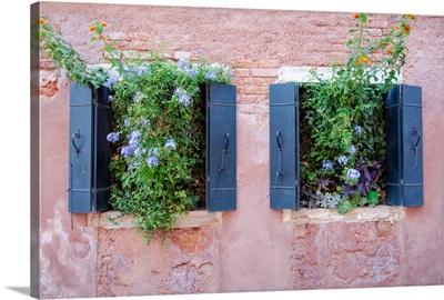 Italian Window Flowers II