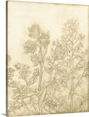 Ivory Field I