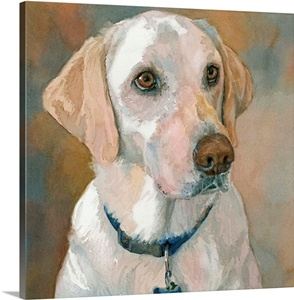 Kaley Yellow Lab Wall Art Canvas Prints Framed Prints