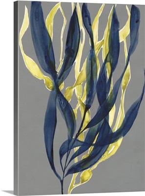 Kelp Embrace I