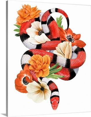 King Snake I