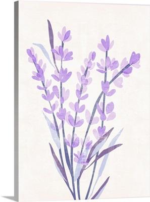 Lavender Land I