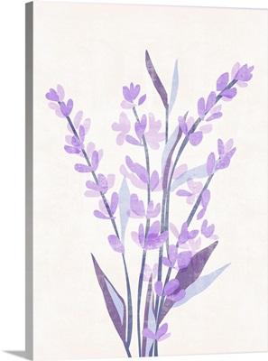 Lavender Land II