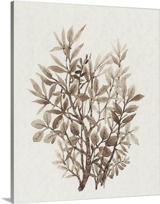 Leaf Arrangement IV