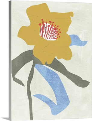 Lenten Rose I