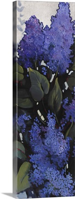 Lilac Spray I
