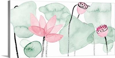 Lotus in Nature IV