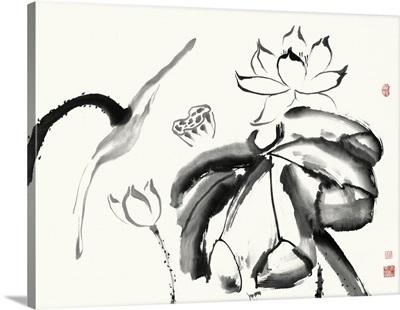 Lotus Study III