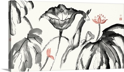 Lotus Study with Coral I