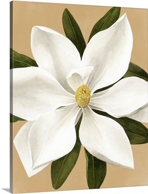 Magnolia On Gold II