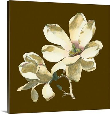 Magnolia on Taupe I