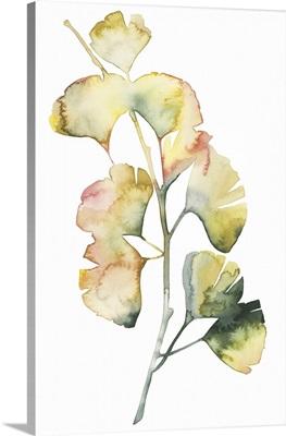 Maidenhair Branch I